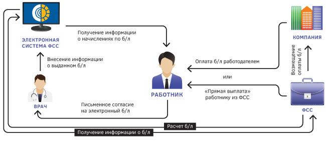 Инфографика: электронный больничный
